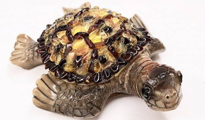 Какое значение имеет черепаха по фен шуй