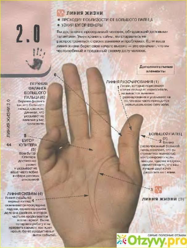 Что значит, если чешется один или несколько пальцев рук – народные приметы и варианты толкований