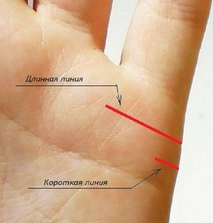 Линия детей на ладони руки у женщин и мужчин: что означает, на какой руке находится – фото, расшифровка. какие линии на руке показывают количество детей: фото с разъяснениями. можно ли определить пол будущего ребенка по линиям руки?