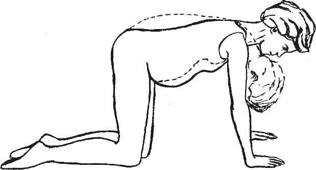 Можно ли тянуться руками вверх во время беременности и по каким причинам этого нельзя делать на поздних сроках