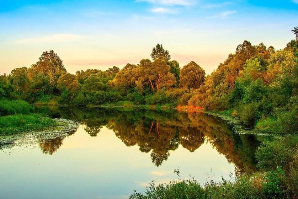 К чему снится плавать в реке: толкование сна, его значение и выбор сонника - tolksnov.ru