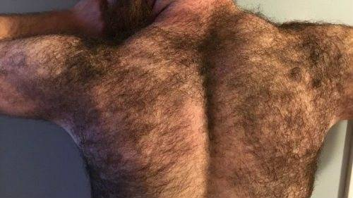 Нсги волосатые
