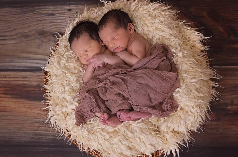 Сонник двойня: к чему снится и что означает сон про двойняшек