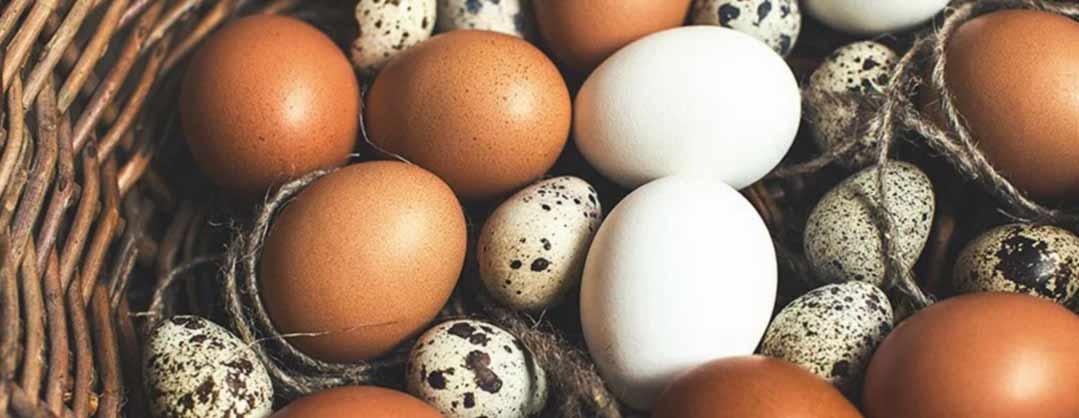 К чему снятся сырые тухлые яйца