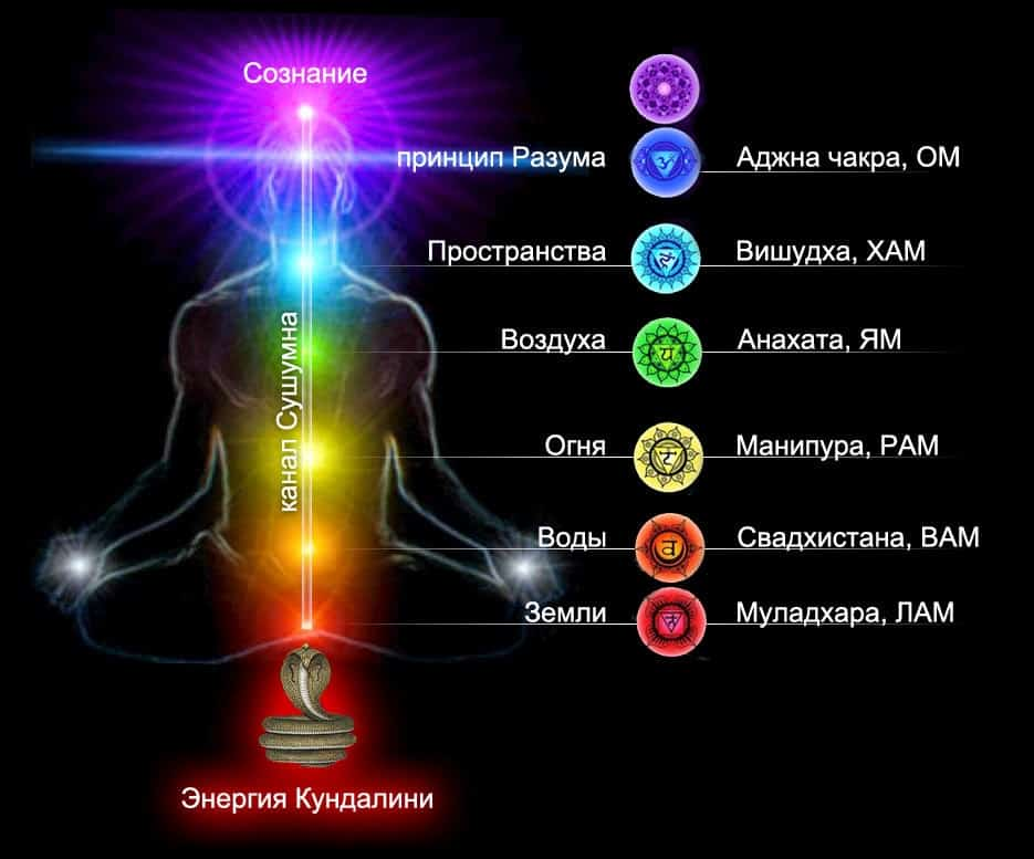 Сахасрара чакра (седьмая) — за что отвечает, цвет, раскрытие