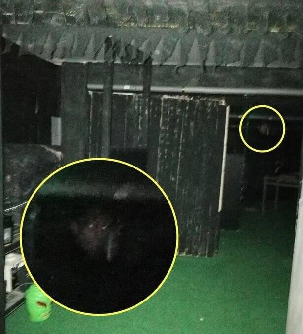 Что происходило в русской бане: что делали банник с обдерихой, как защищались от нечисти и др малоизвестные факты (5 фото)