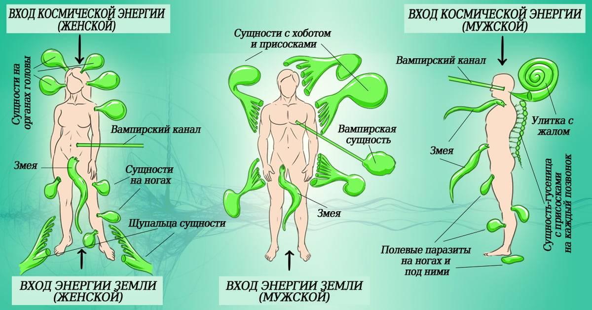 На пике тревожности: симптомы обсессивно-компульсивного расстройства