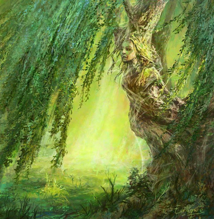 Лесные духи » страшные истории