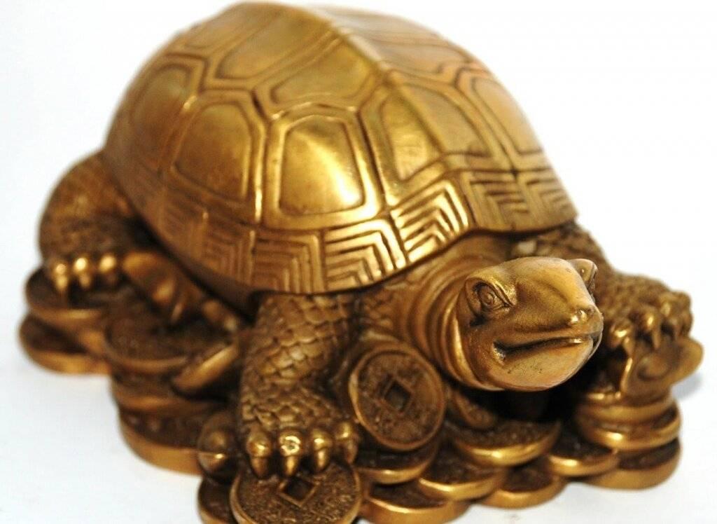 А знаете ли вы что означает символ черепаха?