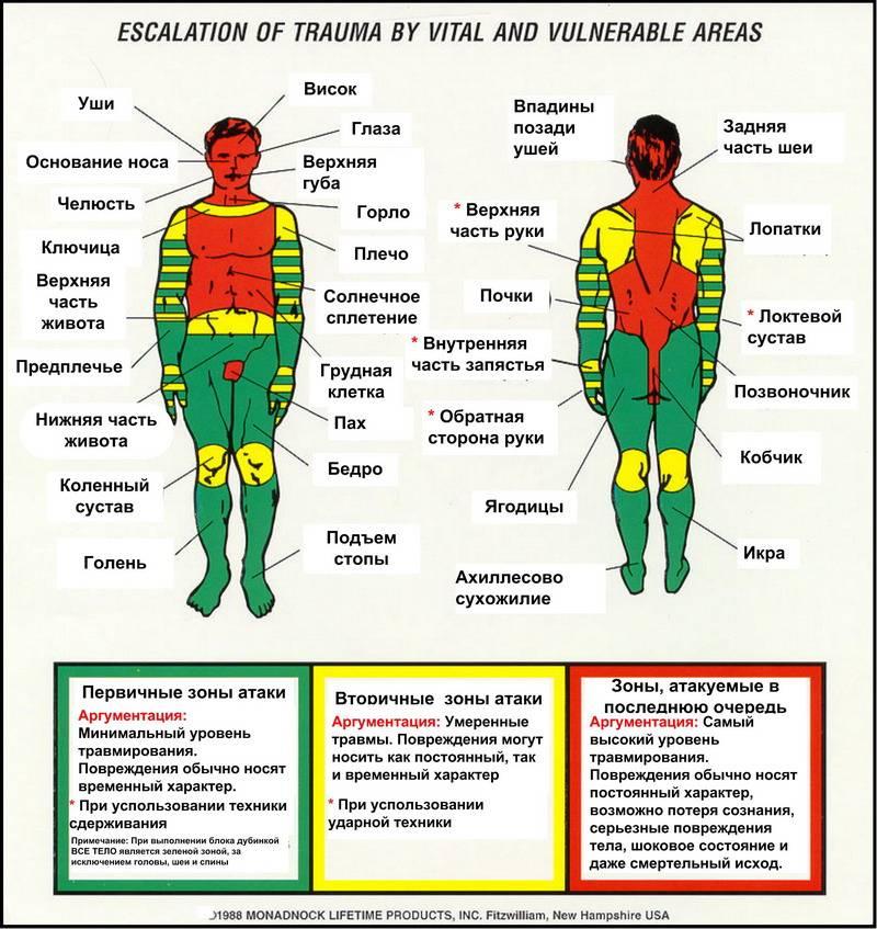 Карта (атлас) точек боли в теле и точек напряжения мышц (триггеры)