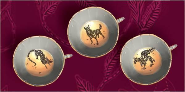 Гадание по чаинкам: толкование чайных фигур