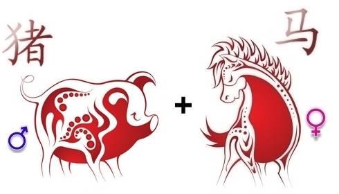 Мужчина-свинья (кабан) и женщина-свинья (кабан) совместимость