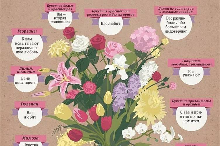 Букет из красных роз: значение такого презента - автор ирина колосова - журнал женское мнение