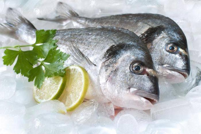 Сонник рыба замороженная в холодильнике. к чему снится рыба замороженная в холодильнике видеть во сне - сонник дома солнца