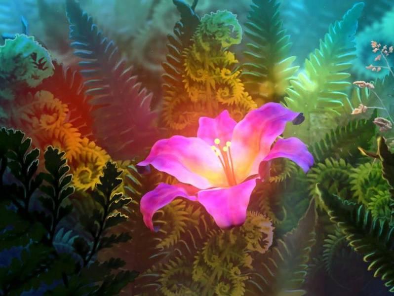 Пока растет папоротник: о чем гласят поверья, почему вокруг него столько мифов и существует ли цветок на самом деле?