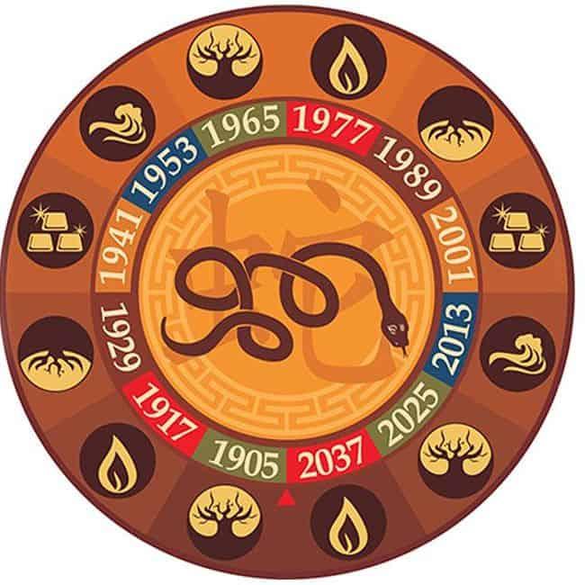 Совместимость дракона и змеи по китайскому гороскопу в любви, дружбе и работе