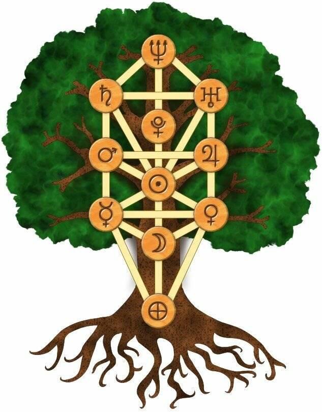 Символ древо жизни у разных народов. значение оберега