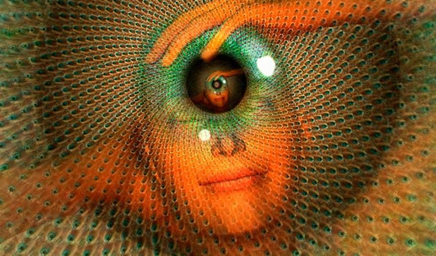Третий глаз у человека — как открыть самостоятельно и безопасно