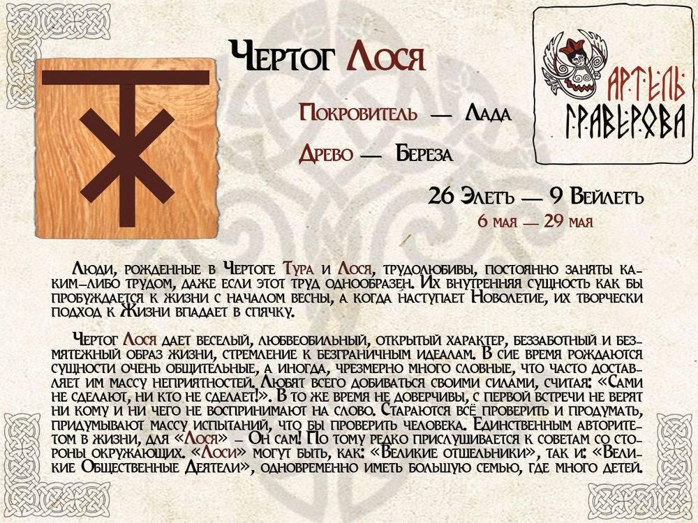 Чертог лося: описание символа, его значение для женщин и мужчин, виды оберегов и влияние