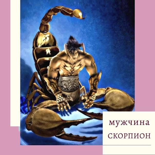 Мужчина скорпион в постели от а до я! как мужчины-скорпионы завоевывают женщин и чего от них ждать далее? как сделать приятное мужчине скорпиону.
