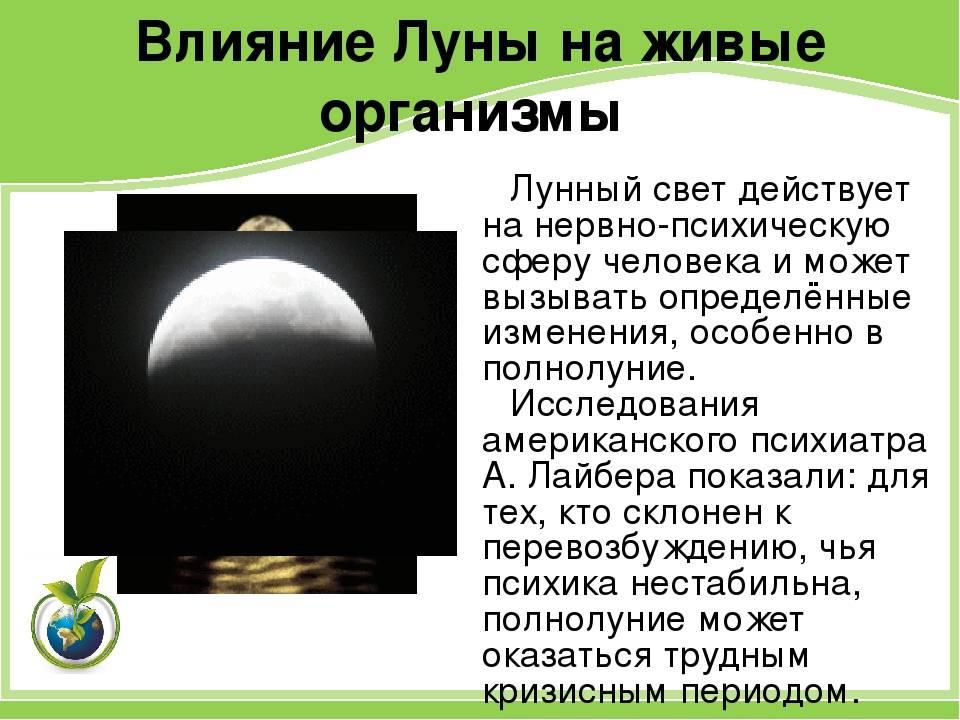Дети часто появляются на свет в полнолуние: как луна влияет на женский организм