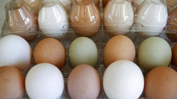 Тухлое пасхальное яйцо