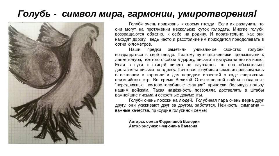 Тату голубь: значение для парней и девушек, история, описание, фото