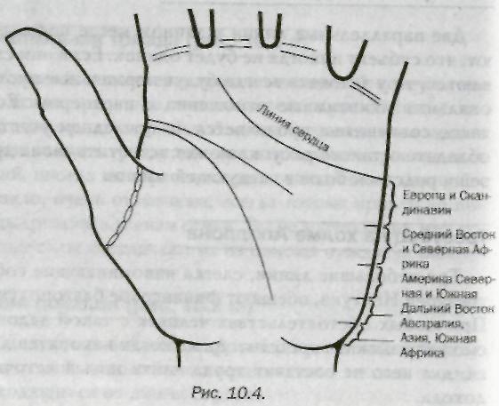 Толкование линии переезда на руке - tutmagiya