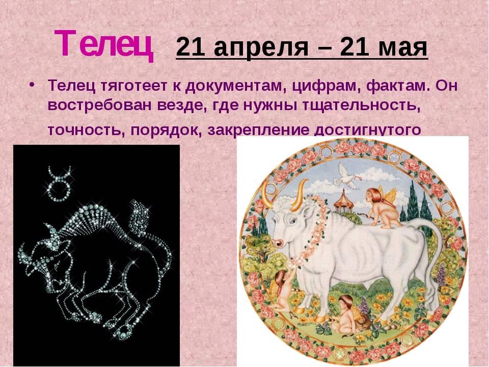 Женщина телец – характеристика знака зодиака