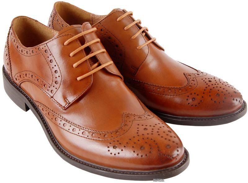Искать обувь во сне: толкование и значение, зависимость от дня недели - tolksnov.ru