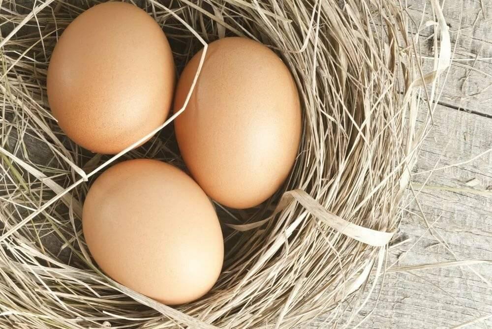 Кчему снятся яйца куриные женщине восне
