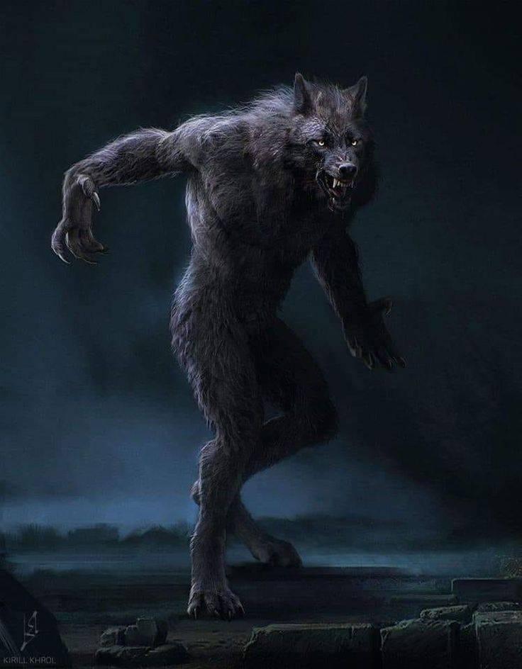 Как стать оборотнем. часть 1 | вампирократия