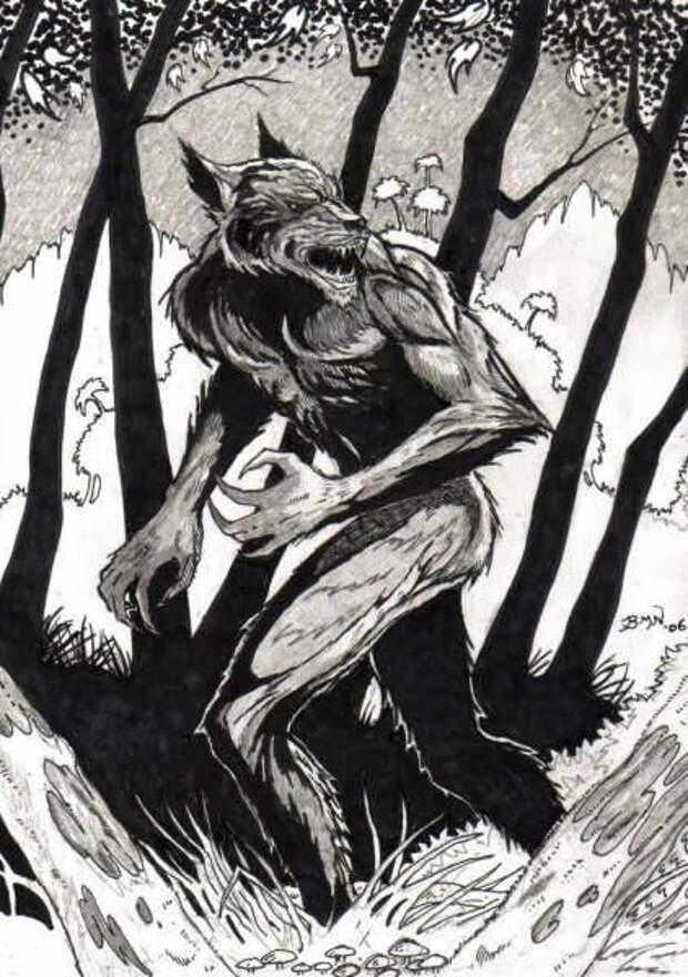 Бестиарий сериала «волчонок», смотреть онлайн полную информацию о мифических существах и персонажах всех серий   bestiary.us