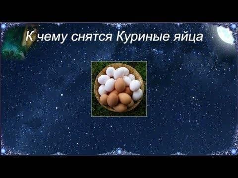 «яйцо к чему снится во сне? если видишь во сне яйцо, что значит?»
