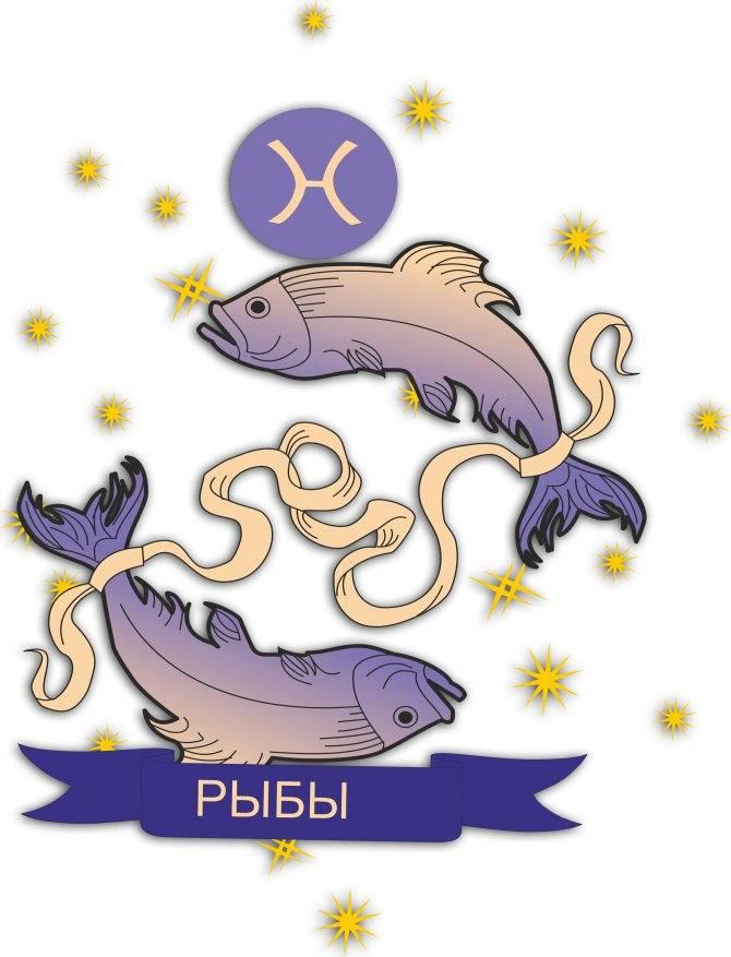 Знак зодиака рыбы: характеристика знака и совместимость