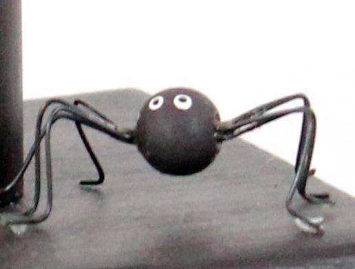 Убить паука в доме: приметы, что будет при случайном или намеренном убийстве