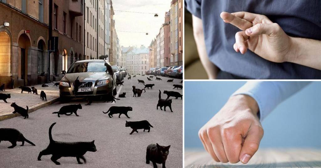 Хорошие и плохие приметы — суеверия разных народов