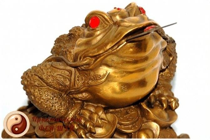 Денежная жаба фен-шуй: куда ставить и как пользоваться талисманом