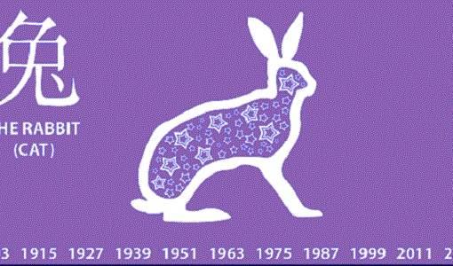 Год кролика, кота, заяца: характеристика и года рождения