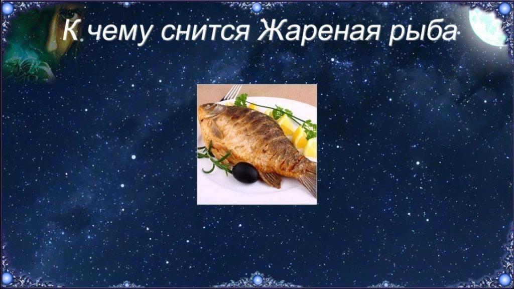 К чему снится рыбалка по соннику? видеть во сне рыбалку  - толкование снов.