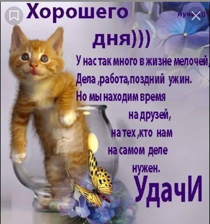 Красивые пожелания хорошего дня в прозе ~