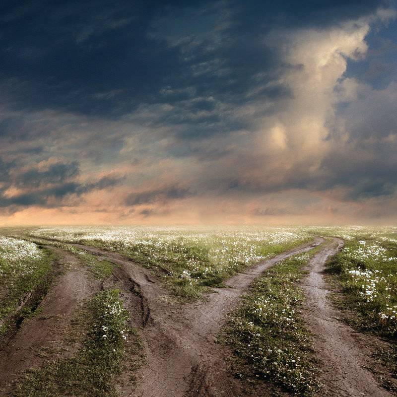 Как определить свой жизненный путь. жизненный путь человека