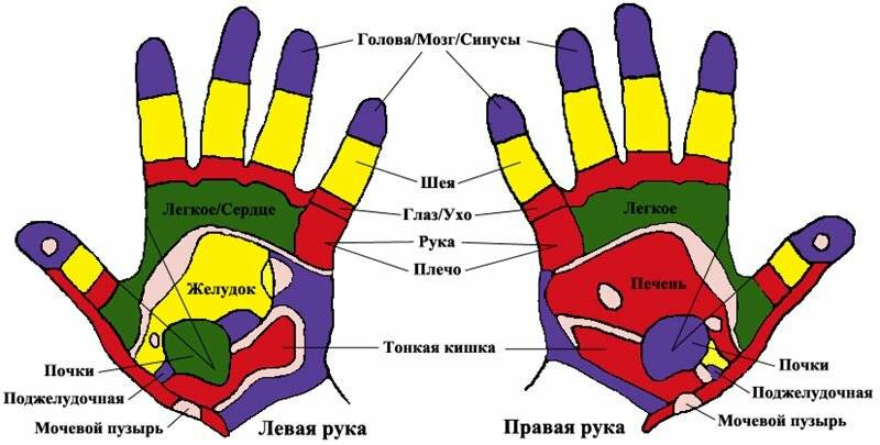 К чему чешется мизинец на левой или правой руке, способы избавиться от негативных последствий