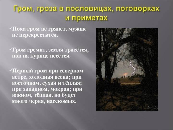Дедовские приметы — если гроза на голый лес
