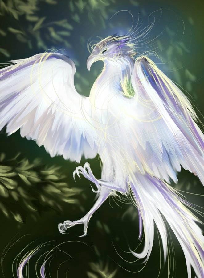 Каладриус — волшебная птица, предсказывающая смерть или исцеление