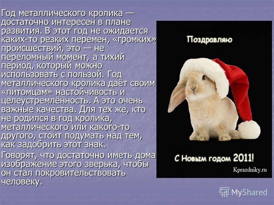 Женщина кролик (14 фото): характеристика и совместимость женщины кролика с мужчиной тигром, котом, козой и другими