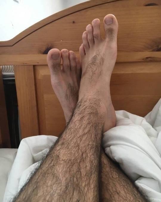 К чему снятся волосатые ноги: будут проблемы, есть страхи или грядёт неравный брак? основные толкования сна про волосатые ноги - автор екатерина данилова - журнал женское мнение