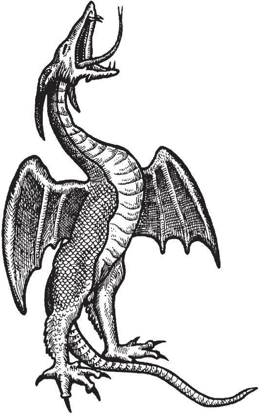 Европейский дракон -  european dragon