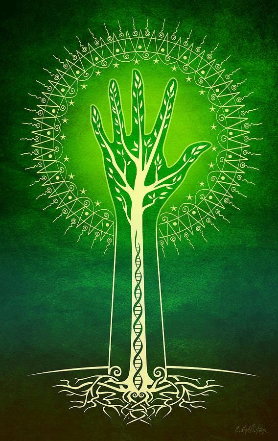 Древо жизни — значение амулета