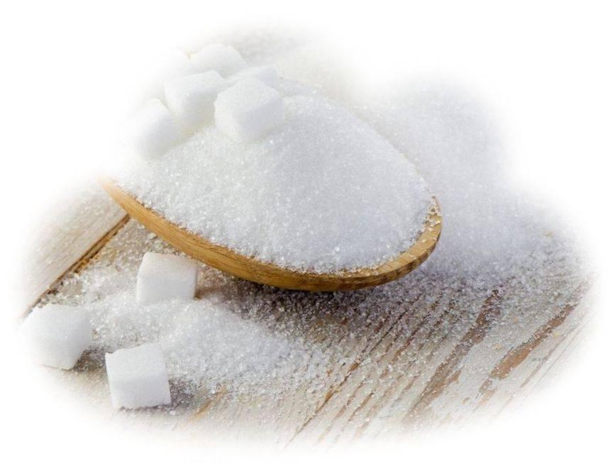 Сонник: к чему снится сахар? :: syl.ru